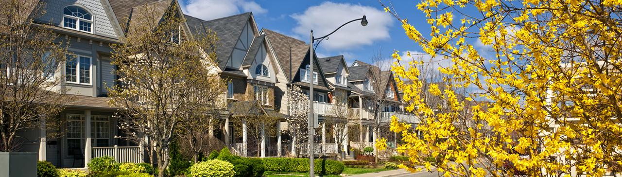 Luxury Homes Digest